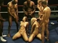 Vidéo porno mobile : Orgy on the boxing ring!